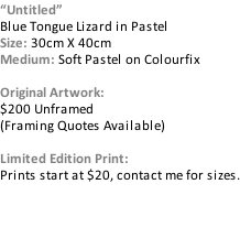 """Untitled"" Blue Tongue Lizard in Pastel Size: 30cm X 40cm Medium: Soft Pastel on Colourfix  Original Artwork:  $200 Unframed (Framing Quotes Available)  Limited Edition Print:  Prints start at $20, contact me for sizes."
